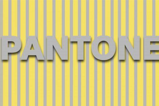 pantone2 900x501 1
